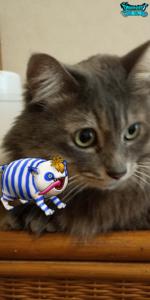プリズニャンと愛猫リン